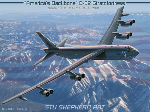 B52 STRATOFORTRESS COMPLETE HISTORY OF WORLDS LONGEST SERVING AND By Bill VG
