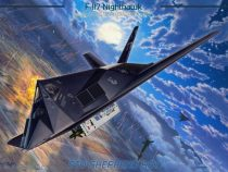 "F-117 ""Team Stealth"""