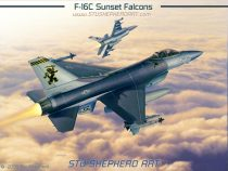 F-16C Sunset Falcons