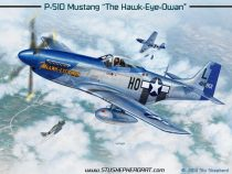 P-51D Hawk-Eye-Owan