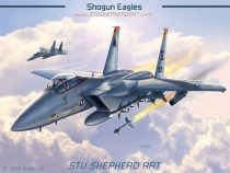 F-15C Shogun Eagles